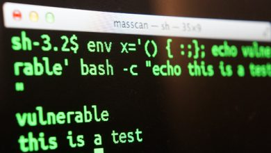 Photo of What You Need To Know About The Shellshock Bug