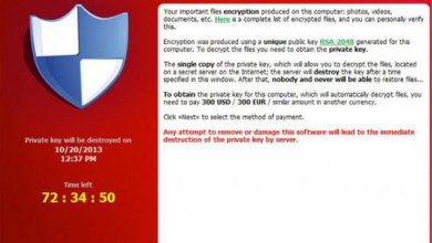 Photo of Attacked By Cryptolocker?  Help Is Here